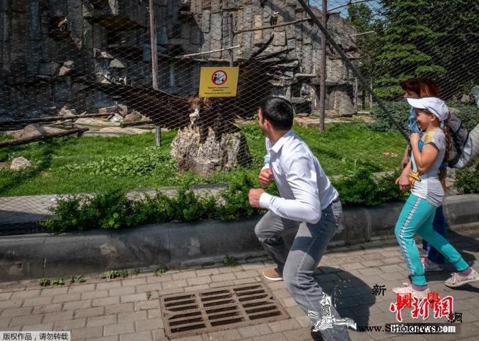 俄罗斯新冠确诊病例超59万莫斯科拟放_莫斯科市-莫斯科-俄罗斯-