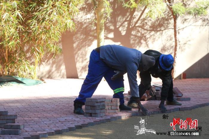 南非新冠肺炎确诊病例增幅创新高卫生部_约翰内斯堡-南非-卫生部长-