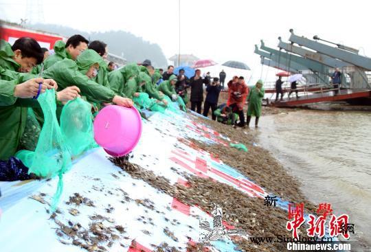 公安部:四方面举措打击长江流域非法捕_长江流域-公安部-捕捞-