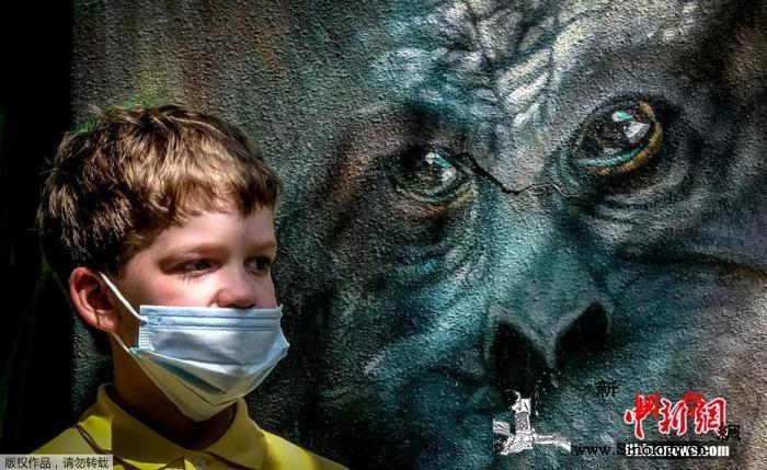 俄单日新增新冠病例降至5000以下累_莫斯科-俄罗斯-病例-
