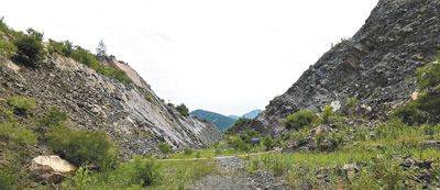 辽宁一公司毁林采矿被多次举报至今问题_毁林-林地-碎石-