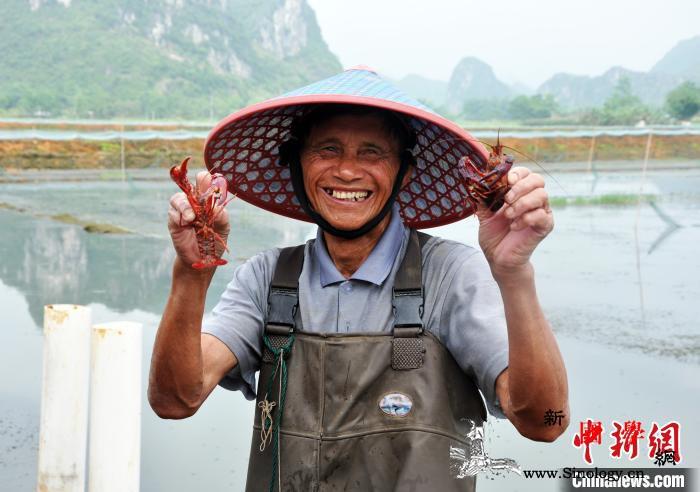 【你笑起来真好看】产业托起致富梦广西_田林县-马山县-上林县-