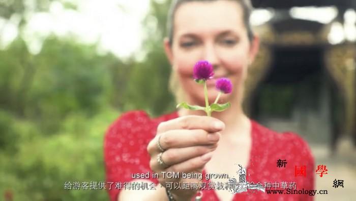 【云·游中国】上海行-_推拿-布鲁塞尔-身体-文化-