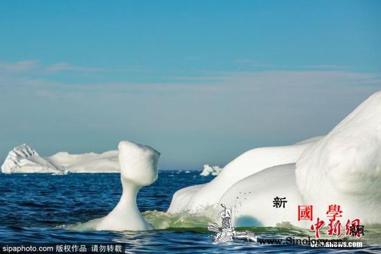 国际最新研究:2019年格陵兰冰盖消_格陵兰岛-冰盖-格陵兰-