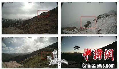 祁连山国家公园:利用大数据建设智慧公_青海省-青海-图为-