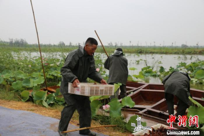 山东普查全省污染源撤出超16万亩不合_鱼台县-污染源-山东-