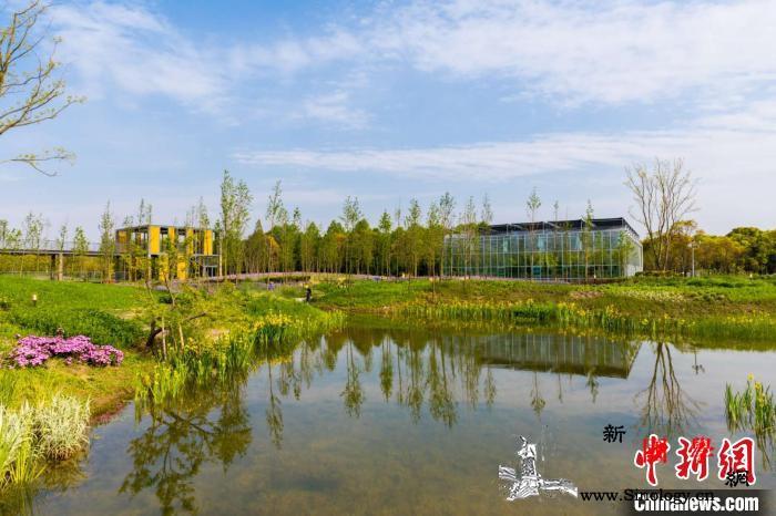 上海高标准打造高水平环境治理体系多元_排污-生态环境-上海-