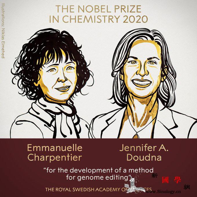2名女性分享2020年诺贝尔化学奖!_斯德哥尔摩-诺贝尔奖-诺贝尔-