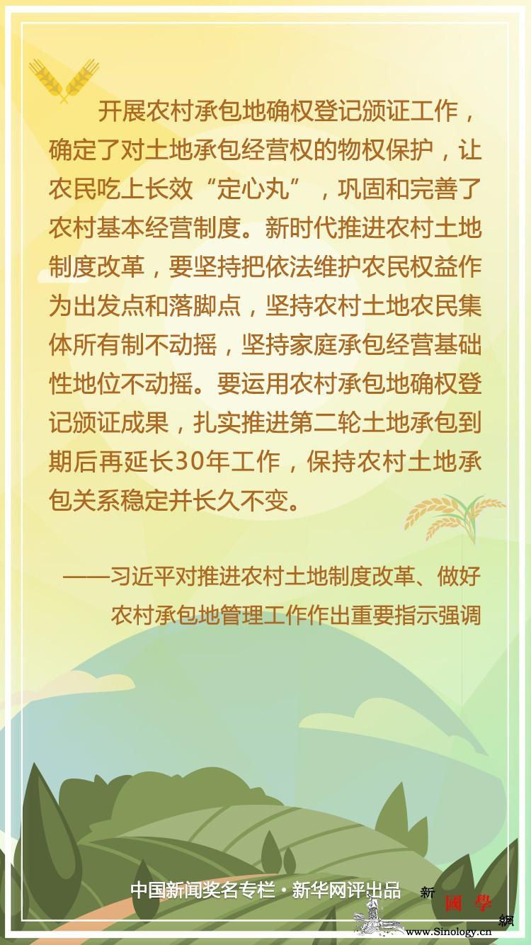 """新华网评:吃上""""定心丸""""一心谋振兴_振兴-乡村-土地承包-"""