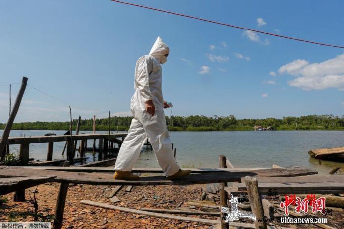 巴西确诊病例累计超567万例_卫生部-巴西-乘船-