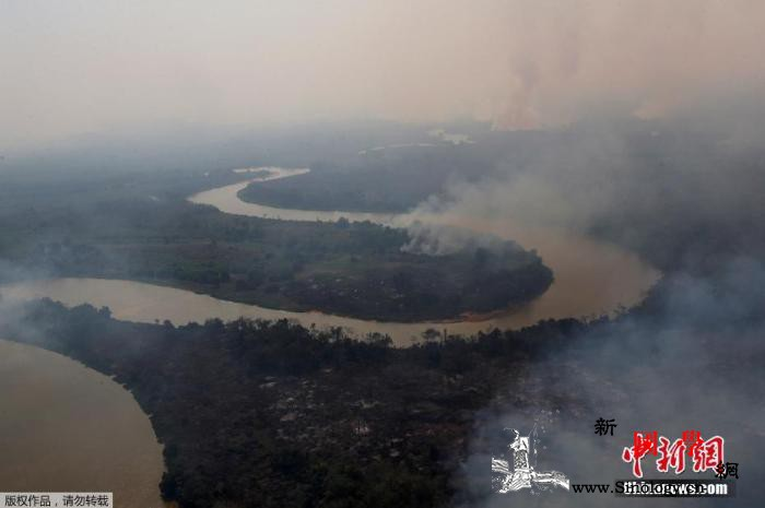 超22万起!巴西2020年野火数量创_南美洲-巴西-湿地-