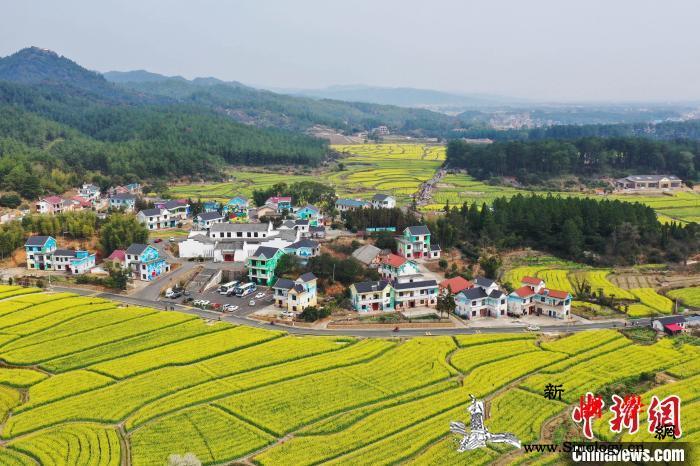 报告:乡村外出人才返乡态势见好应予必_返乡-乡村-江西省-