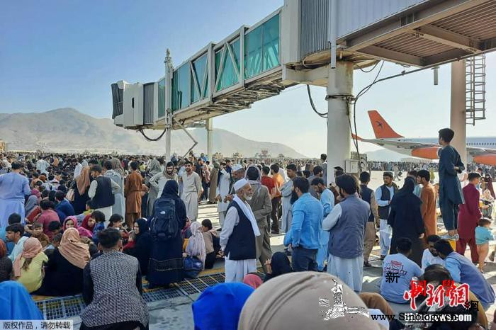 喀布尔机场混乱致12死塔利班试图驱散_喀布尔-塔利班-阿富汗-