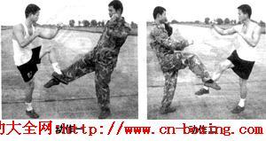 提前阻击腿法_阻击-格斗-重心-平衡-