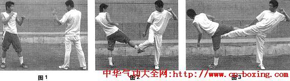 戳脚腿法格斗精粹_转体-脚掌-右腿-脚尖-