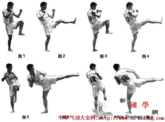 散打基本腿法解析及练习方法_散打-上体-右腿-纠正-