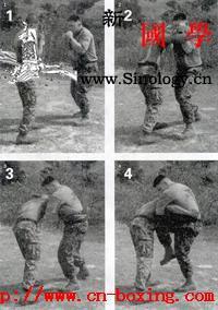 陆战队搏击术_帕尔马-海军陆战队-搏击-陆战队-