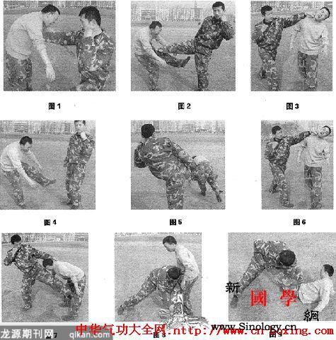 格斗常用战法运用实例_战法-格斗-防守-反击- ()