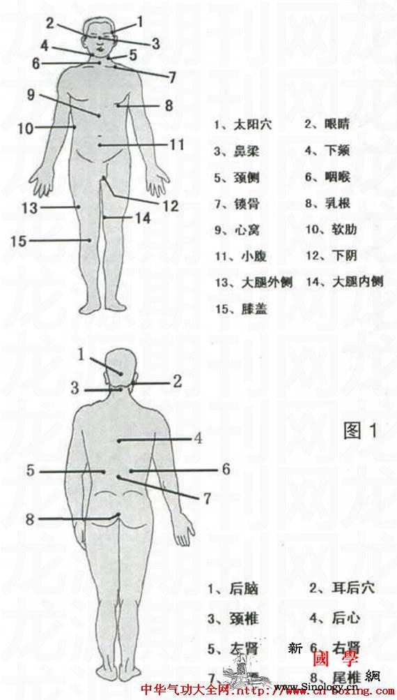 西江白眉拳之实战应用_三星-西江-转体-屈膝-