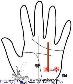 手相成功线图解_手相-颠峰-成功-阳线-