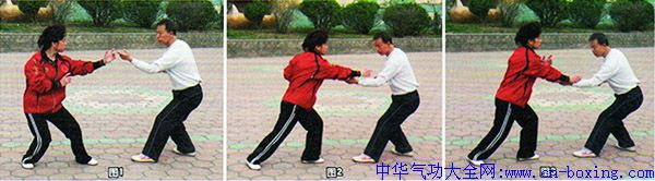 秘宗拳技法:三合手-于布君孙玉玲_技法-习练-前臂-退步-