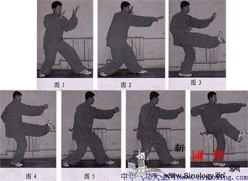 白猿通背拳之退步扒门——高树山整理_退步-转体-脚尖-右脚-