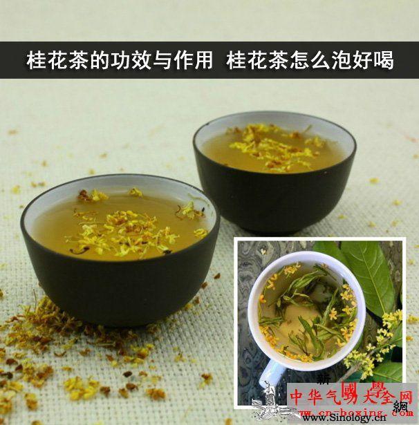 桂花茶的功效与作用桂花茶怎么泡好喝_功效-陈皮-脾胃-泡茶-