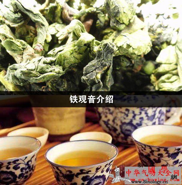 铁观音介绍_铁观音-饮茶-抗癌-氧化- ()