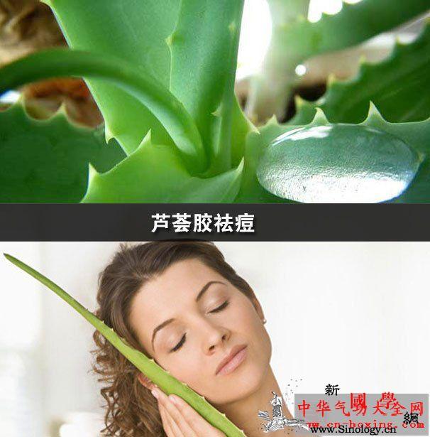 芦荟胶祛痘_芦荟-光滑-功效-肌肤-