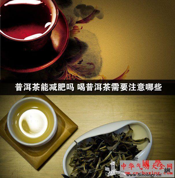 普洱茶能减肥吗喝普洱茶需要注意哪些_普洱-明治-普洱茶-沱茶- ()