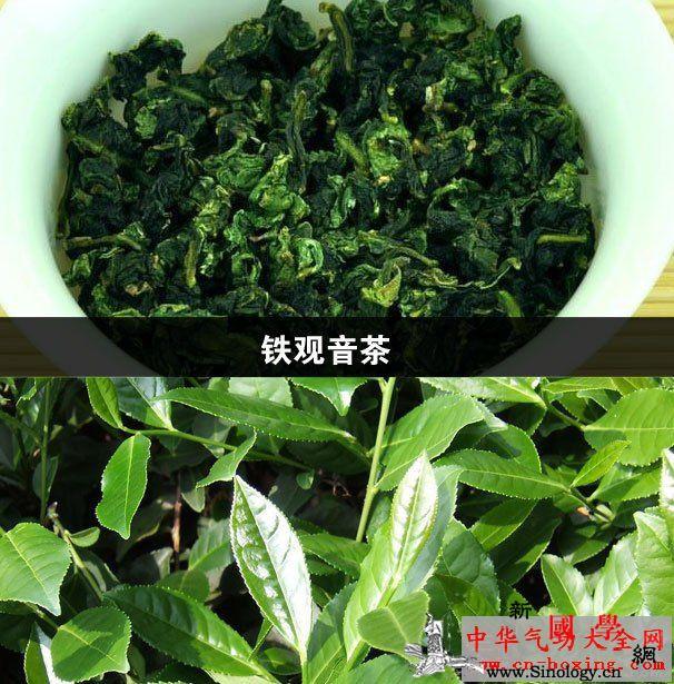 铁观音茶_铁观音-脂蛋白-儿茶素-饮茶- ()