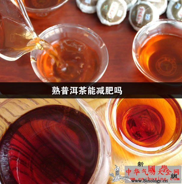 熟普洱茶能减肥吗_普洱-普洱茶-儿茶素-花茶-