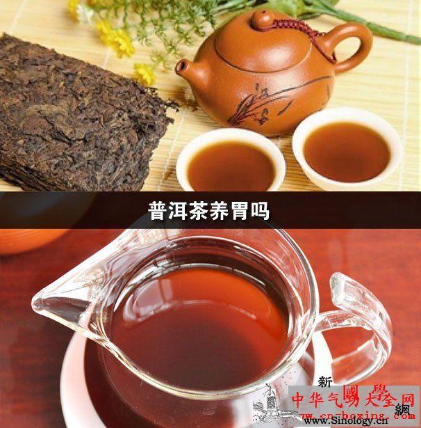 普洱茶养胃吗_普洱茶-闻香-公道-香气- ()