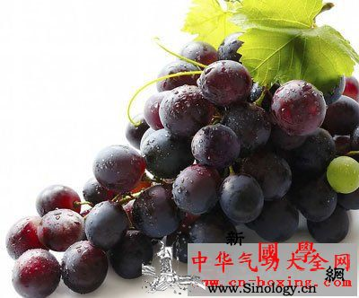 葡萄参茶_智利-白质-葡萄-贫血-