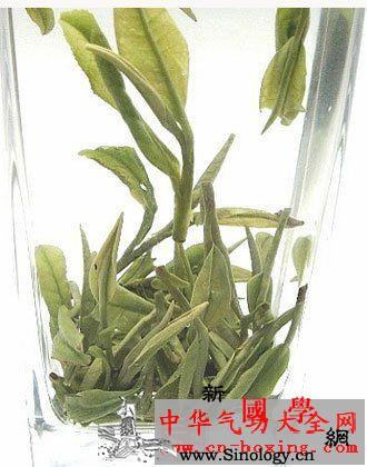 二根茴香酒_凌霄花-调经-茴香-米酒- ()