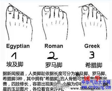 从脚趾头看出你美不美_脚趾-埃及-排列-女人- ()