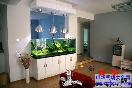 公司养鱼风水_吉星-养鱼-风水-水气-