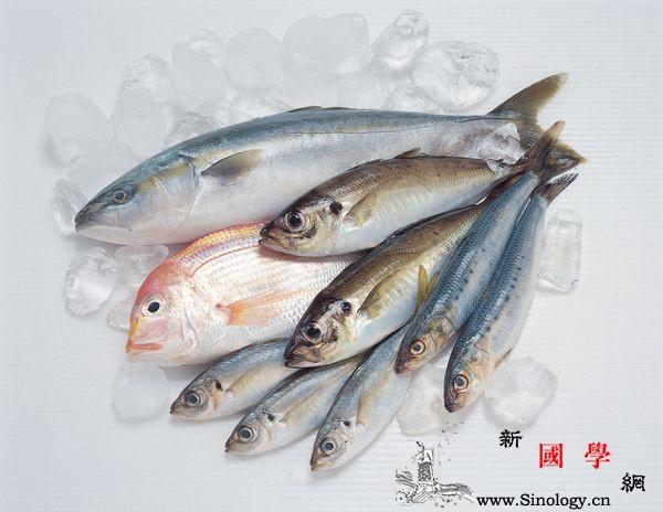 用什么鱼做鱼泥好_碎末-菜汤-鱼刺-鱼肉-