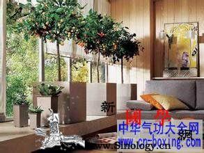买新房时的十二条原则_阳宅-楼宇-摆放-阴阳-