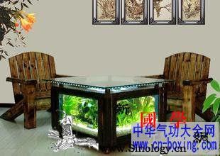 客厅植物的摆放风水知识_摆放-风水-客厅-开运- ()