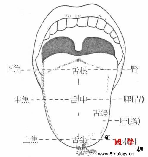 这6种舌像出卖了孩子的健康100%的妈妈都_舌苔-舌尖-舌头-症状-