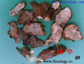 茯苓皮的功效与作用_腠理-菌核-异名-菌类-